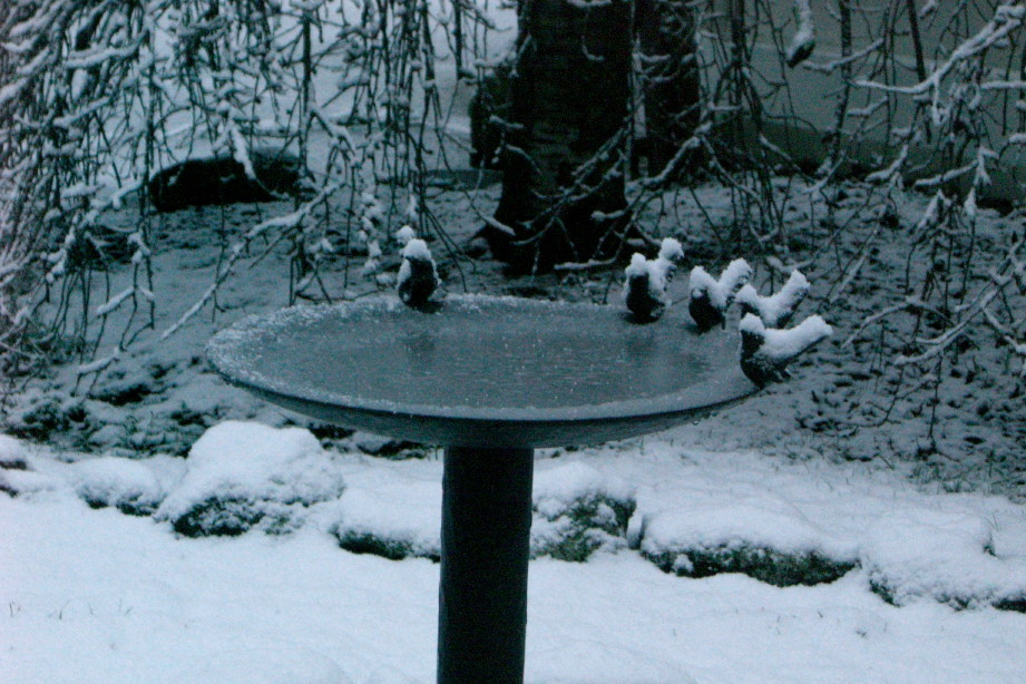 Garden Sculpture: Bronze Birdbath in Snow, Australia