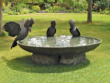 Garden Sculpture: Black Cockatoo Birdbath Bowl - launched at the Melbourne International Flower & Garden Show, Australia