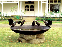 Wedding Anniversary Present Ideas for men and ladies - Galah Birdbath Bowl - launched at the Melbourne International Flower & Garden Show, Australia