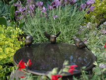 Chickadee Birdbath Dish