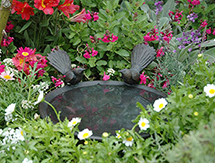Special Occasion Gift Ideas for men and ladies: Fantail Birdbath Dish - launched at the Ellerslie Flower Show, New Zealand