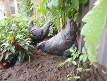 Free Standing Sculptures: Hens – launched at the Chelsea Flower Show, London, UK