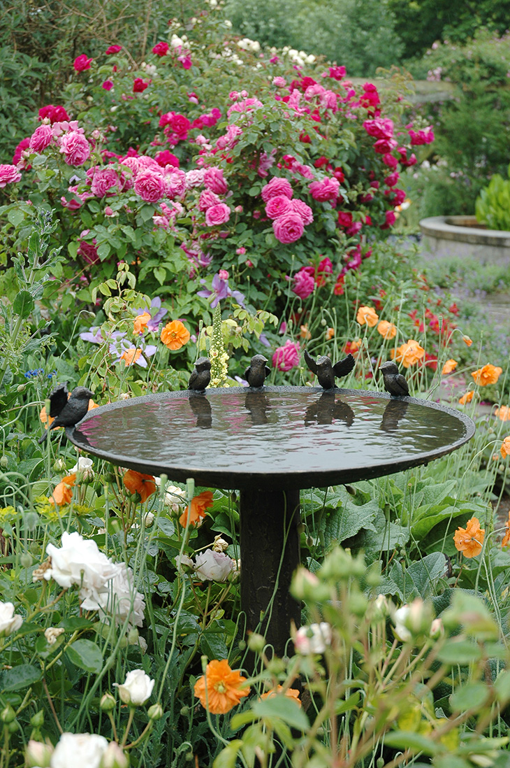600mm Blue Tit Birdbath