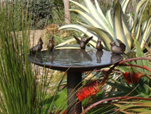 USA Garden Sculpture: Cardinal Birdbath - launched at the Architectural Digest Design Show, New York, USA