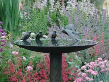 600mm-Swallow-Birdbath_215