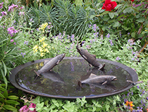 Fish Sculpture: Trout with Dragon-fly Birdbath Bowl - launched at the Architectural Digest Design Show, New York, USA