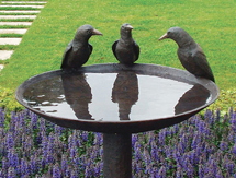 Garden Present Ideas for men and ladies: Aussie Magpie Birdbath – launched at the Melbourne International Flower & Garden Show, Australia