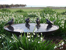 Garden Present Ideas for men and ladies: Blackbird Birdbath Bowl - launched at the Chelsea Flower Show, London, UK
