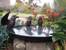 Wedding Anniversary Present Ideas for men and ladies: Kookaburra Birdbath Bowl as seen in Country Style Magazine, Australia