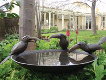 Bird Sculpture: Toucan Birdbath Bowl - launched at the Architectural Digest Design Show, New York, USA