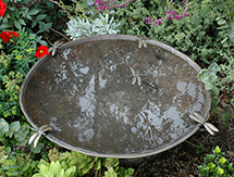 800mm Dragonfly Birdbath Bowl