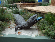 Giant Blue Tongue Lizard